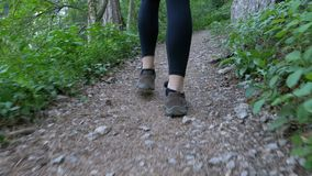 View on Legs of Traveler Woman Hiking on the Forest Trail Path in Mountain. Walking on Rocks. The camera behind the girl moves smoothly. Achieving the goal stock video