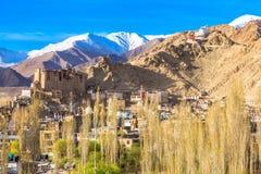 View of Leh Palace and Namgyal Tsemo Monastery Stock Photos