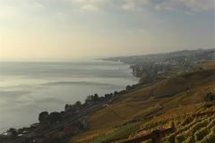 View of the Lavaux terraces, lake Léman, Switzerland royalty free stock photography