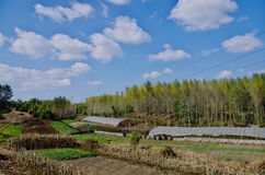 A view of Liaoyuan in Jilin province in China Royalty Free Stock Image