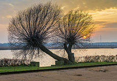 View on Lielupe river at sunset,Jurmala, Latvia Royalty Free Stock Photo