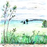 View of light whitish foggy summer field and forest house plants clouds sky dull trees grass road watercolor paint illustration. View of light diluted whitish Royalty Free Stock Images