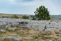 View of the Limestone Pavement above Malham Cove in the Yorkshir. E Dales National Park Stock Photos