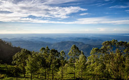 View of Lipton`s Seat - Dambetenna. Sri Lanka Royalty Free Stock Image
