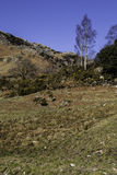 View of little langdale Royalty Free Stock Image
