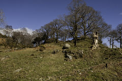 View of little langdale Royalty Free Stock Photography