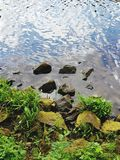 View on little stones and water reflections at the river in the north west of germany. And photographed during a walk in the nature in the north west of germany royalty free stock photos