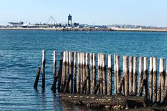 View of Logan Airport from Fort Independence at Castle Island Stock Image