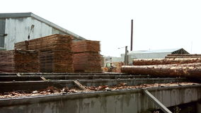 View of logger unloads lumber on base stock video