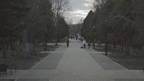 A view of a long avenue in a park in the center of the city. A pair of old people moves away from the camera. Spring. Spring evening. A long alley. The avenue stock video