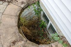 Free View Looking Down Into A Neglected Egress Window Royalty Free Stock Photo - 120245065