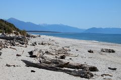 Driftwood on shore, Ship Creek, West Coast, NZ. View looking south west along the West Coast of South Island in New Zealand. There is driftwood on the shore of Stock Photos