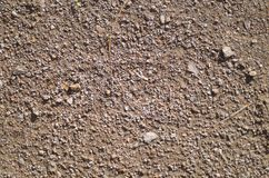 Dirt background texture. View looking straight down onto gritty soil and small pebbles Stock Photography