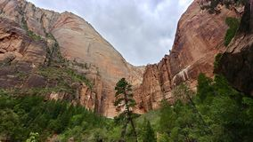Emerald Pools Trail at Zion National Park. This is a view looking up at the rock walls that stand over the Upper Emerald Pool at Zion National Park Stock Photo