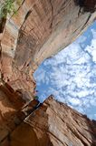 Emerald Pools Trail at Zion National Park. This is a view looking up at the rock walls that stand over the Upper Emerald Pool at Zion National Park Royalty Free Stock Photography