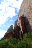 Emerald Pools Trail at Zion National Park. This is a view looking up at the rock walls that stand over the Upper Emerald Pool  at Zion National Park Royalty Free Stock Images