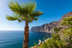 View of Los Gigantes cliffs Spain Stock Photography