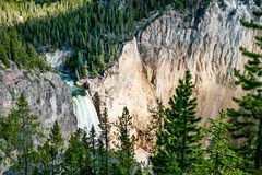 Lower Falls in Yellowstone National Park Royalty Free Stock Photo