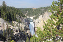 View Of Lower Falls, Yellowstone National Park stock images