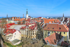 View of the Lower Town of Tallinn Old Town, Estonia Royalty Free Stock Photography