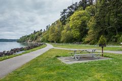 Lush Trees Shoreline. A view of lush trees along the shore at Saltwater State Park in Des Moines, Washington stock photo