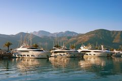 Luxury yacht marina of Porto Montenegro in Adriatic. Tivat, Montenegro. Free space for text Stock Photography