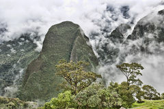 View From Machu Picchu Royalty Free Stock Images