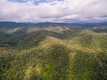 View of Madagascar. (Andasibe-Mantadia National Park Royalty Free Stock Photo