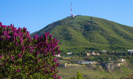 View of the majestic Mount Mashuk from Pyatigorsk Royalty Free Stock Photos