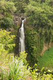 View of the Makahiku Falls. Along the Pipiwai Trail. Motion blur in the folage in the foreground due to strong winds in the valley royalty free stock photo