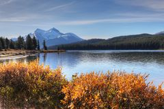 Maligne Lake in the Rocky Mountains. View of Maligne Lake in the Rocky Mountains Royalty Free Stock Images