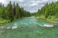 Maligne River, Jasper National Park, Canada. View of the Maligne River, located in Jasper National Park, Alberta, Canada Royalty Free Stock Photos