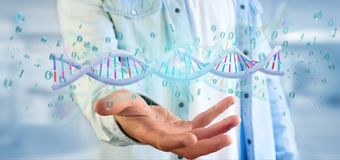 Man holding a 3d rendering data coded Dna with binary file around. View of a Man holding a 3d rendering data coded Dna with binary file around stock photo