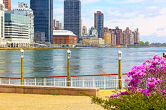 View on Manhattan from Roosevelt Island in spring. Stock Photo
