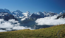 View from Mannlichen at the Bernese Alps (Berner Oberland, Switzerland). The Mannlichen is a mountain (2,343 metre) in the Swiss Alps located within the Canton Stock Image