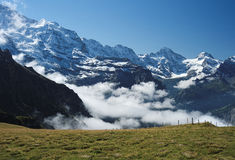 View from Mannlichen at the Bernese Alps (Berner Oberland, Switzerland). The Mannlichen is a mountain (2,343 metre) in the Swiss Alps located within the Canton Royalty Free Stock Photo