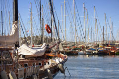 View of many yachts sailboats Royalty Free Stock Image