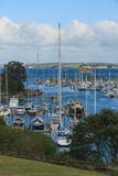 View of marina, Gulf Harbour, Auckland, New Zealand. Photo took in New Zealand, photo is usable on picture post card, calendar, gardening, magazine Royalty Free Stock Images