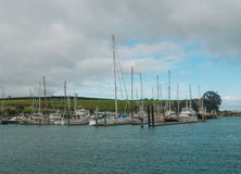 View of marina, Gulf Harbour, Auckland, New Zealand. Photo took in New Zealand, photo is usable on picture post card, calendar, gardening, magazine Stock Photos