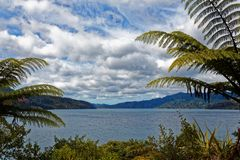 View into the Marlborough Sounds stock photography