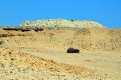 Marsa alam desert Stock Images