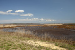 A View of the Marsh Stock Photo
