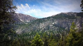 A view from Mary Jane Falls, Mt. Charleston Royalty Free Stock Image