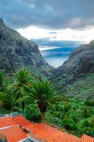 View from Masca village to the canyon and mountains, Tenerife, C Royalty Free Stock Photos