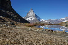 View of Matterhorn mountain with dried glass and lake foreground Stock Images