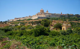 View of Mdina`s St. Paul`s Cathedral from the countryside below,. The view of the old capital Mdina with St. Paul`s Cathedral surrounding by the fortress wall Stock Photography
