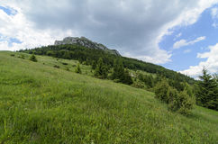 View from meadow on Velky Rozsutec Royalty Free Stock Photo