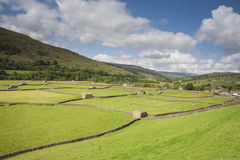 View of Meadows, Gunnerside, Swaledale. Barns, meadows and stone walls, Gunnerside, Swaledale, Yorkshire Dales National Park Stock Images