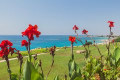 View on the Mediterranean coast. In Ayia NAPA in Cyprus Royalty Free Stock Photography