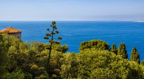 View of Mediterranean Sea. Nice, French Riviera, Cote d`Azur, Alpes Maritimes. Mediterranean Sea and trees in Nice. Panoramic elevated view of the French Riviera Stock Image